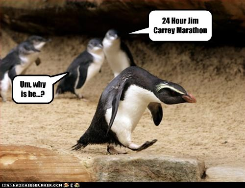 24 hours,grumpy,jim carrey,making faces,marathon,penguin