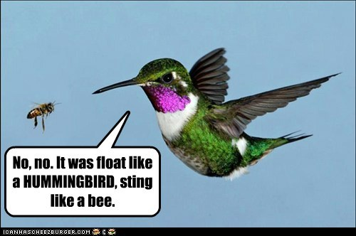 No, no. It was float like a HUMMINGBIRD, sting like a bee.
