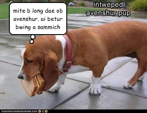 Cheezburger Image 6567105024