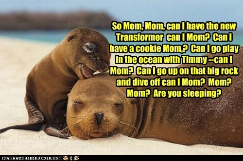 seals,mom,transformer,cookies,rock,motherhood,sleeping,asking,bothering,categoryvoting-page
