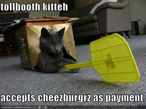 Cheezburger Image 656770816