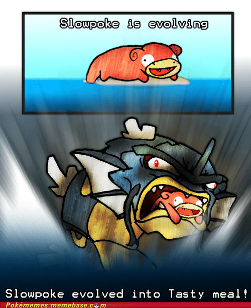 gyarados,Sad,slowpoke,tasty meal