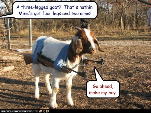 A three-legged goat? That's nuthin. Mine's got four legs and two arms! Go ahead, make my hay.