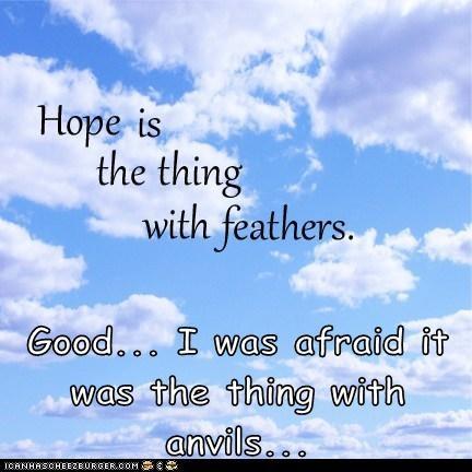 birds feathers hope - 6568023552