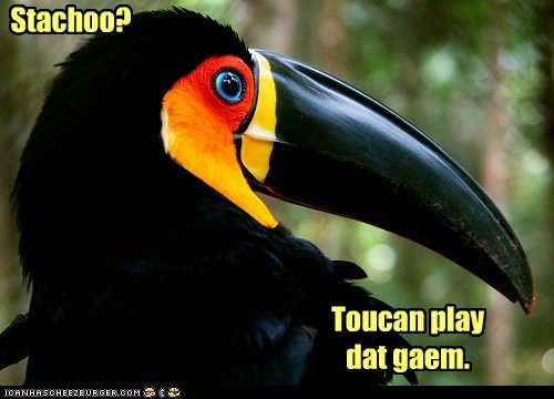 bird expression game pun statue still toucan
