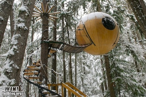 design,sphere,tree house