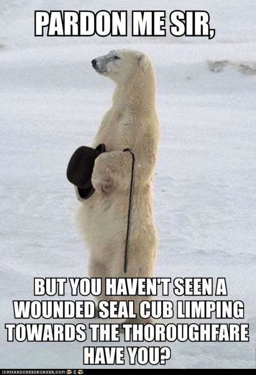bears,captions,fancy,good sir,lies,polar bears,seals,sir,trickery