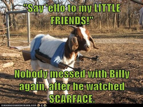 goat billy scarface say hello to my little friend guns - 6568295680
