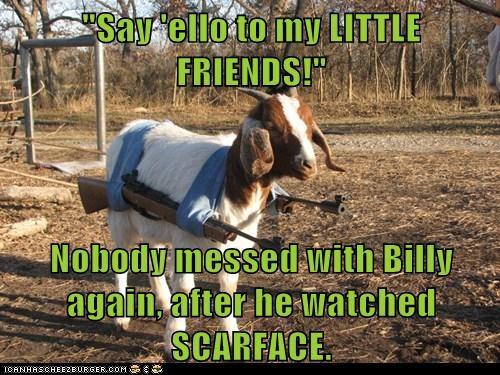 goat scarface guns - 6568295680
