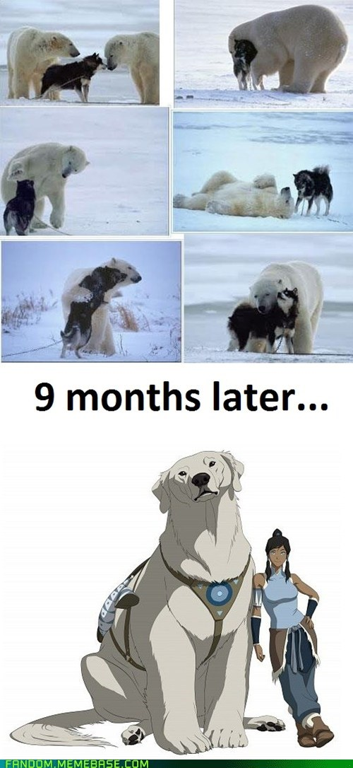 Avatar,dogs,naga,polar bear