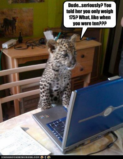 cheetah,computer,cub,fat,insensitive,lying,online dating,pounds