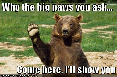 Why the big paws you ask... Come here. I'll show you