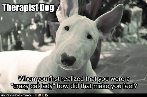 dogs bull terrier therapist dog crazy cat lady feels - 6569651712