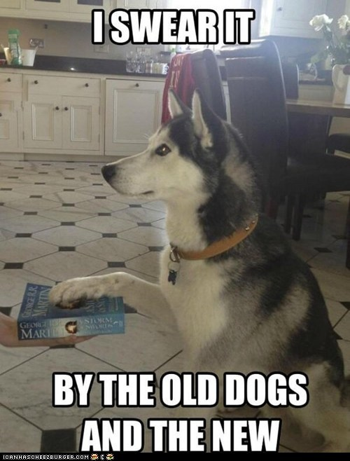 books,captions,dogs,Game of Thrones,huskies,i swear