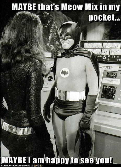 actor Adam West batman celeb funny nostalgia TV - 6570063616