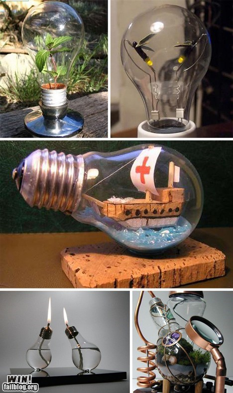 design light bulb ship in a bottle terrarium - 6570224128
