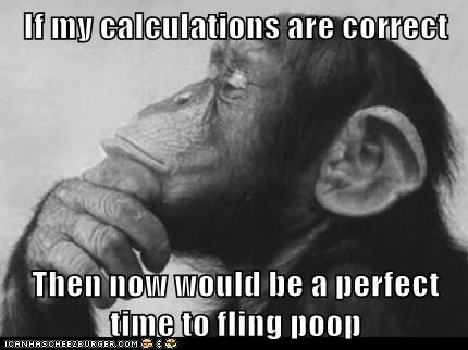 calculations captions chimpanzee civilized flinging perfect poop proper