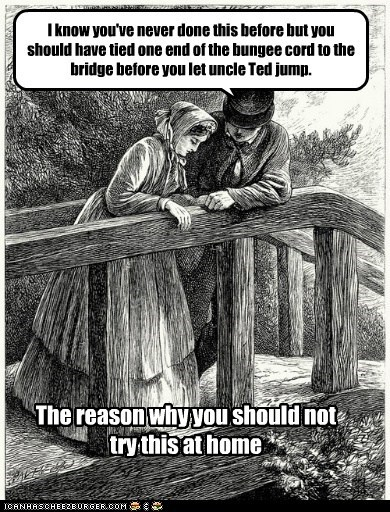 I know you've never done this before but you should have tied one end of the bungee cord to the bridge before you let uncle Ted jump. The reason why you should not try this at home