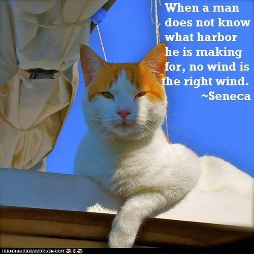 Weekly quote LOL~Seneca