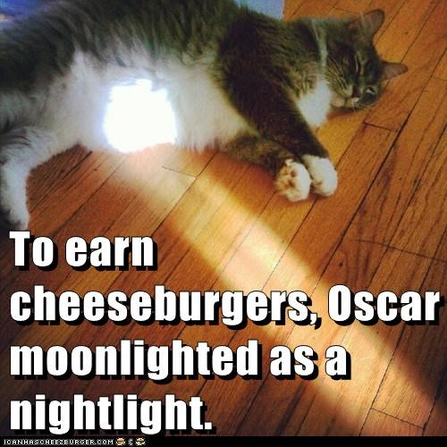 Cheezburger Image 6571025664
