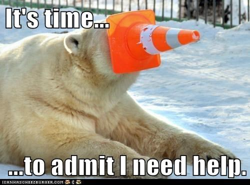 admit,help,options,polar bear,stuck,time,traffic cone