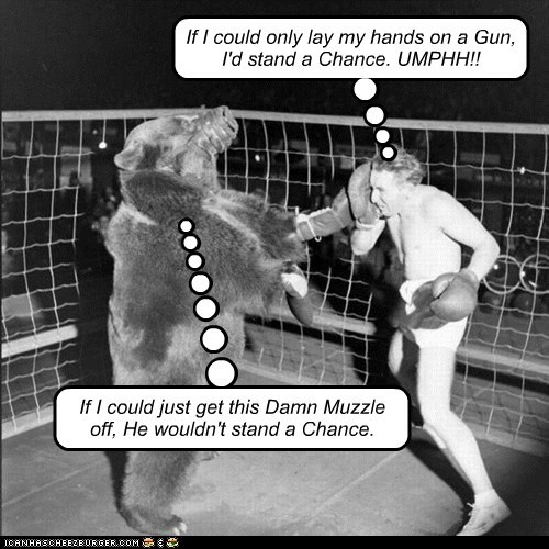 boxing cage fight man bear muzzle