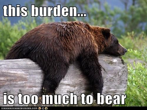This Burden Is Too Much To Bear Cheezburger Funny Memes Funny Pictures
