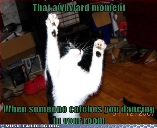 awkward moments Cats dancing