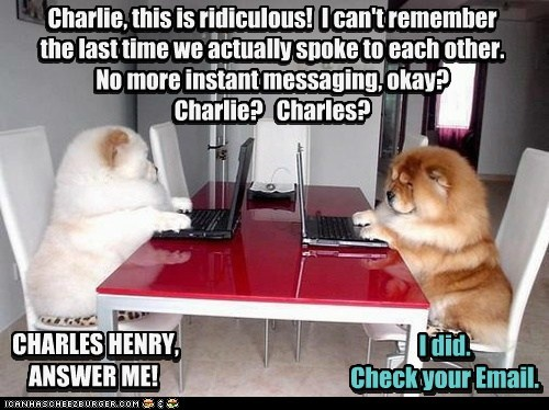 dogs chow chow computer laptop email fighting relationship - 6571516672