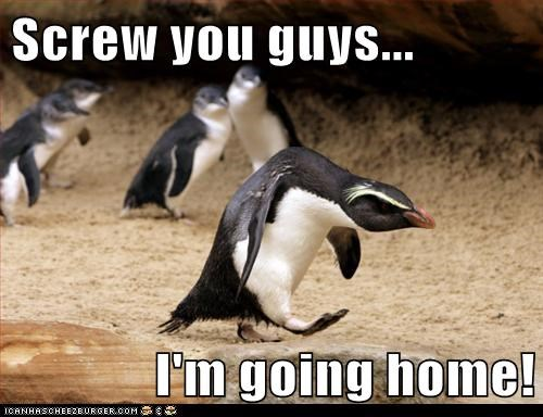 angry captions going home grumpy hunched penguin screw you guys - 6571532032