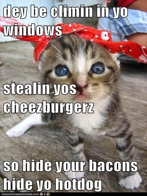 Cheezburger Image 6571664896