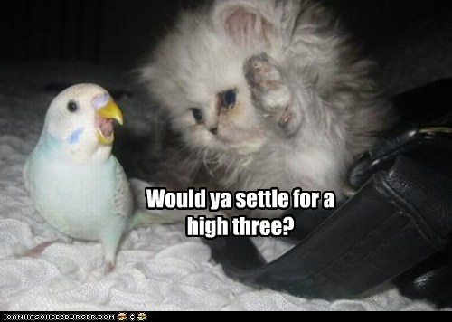 Would ya settle for a high three?