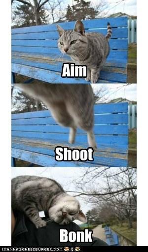 Aim Shoot Bonk
