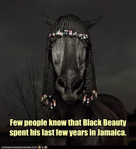 black beauty dreadlocks jamaica last years rastafarian - 6572329216
