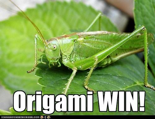 grasshopper origami win leaf - 6572609280