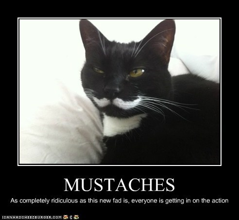 MUSTACHES As completely ridiculous as this new fad is, everyone is getting in on the action