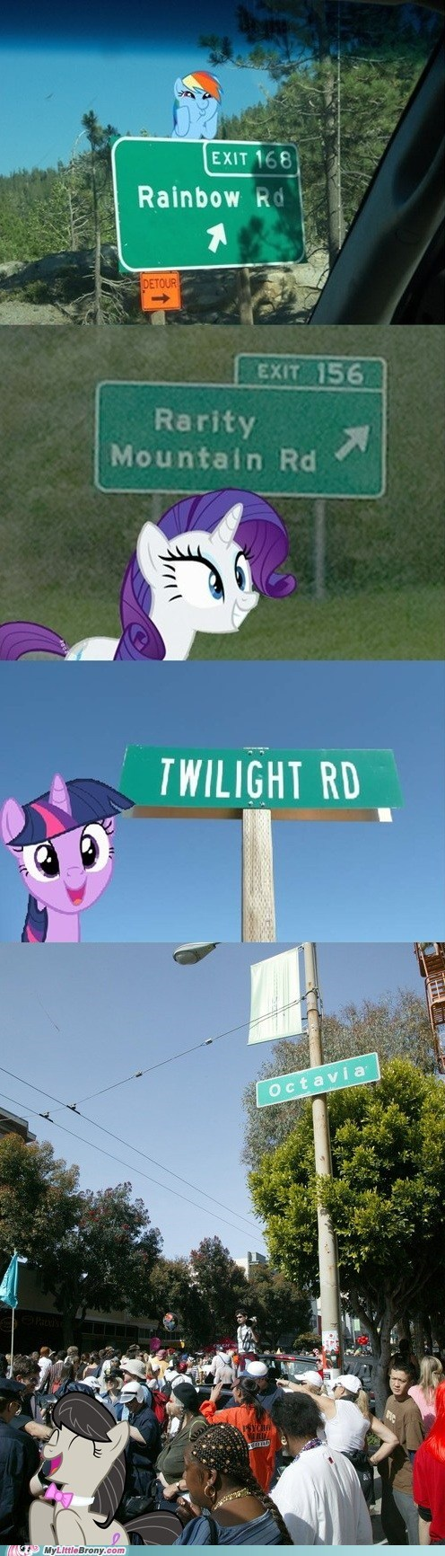 end pls end,IRL,octavia,street signs