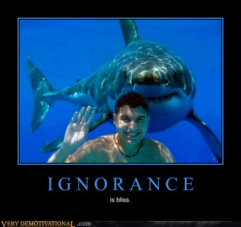 bliss,ignorance,shark,wtf