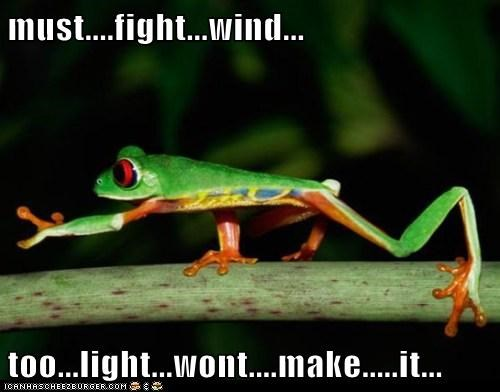 tree frog wind fighting light walking mime