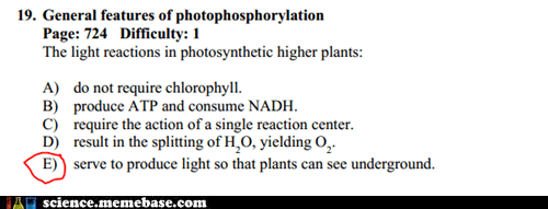 answer biology photosynthesis test - 6573591808