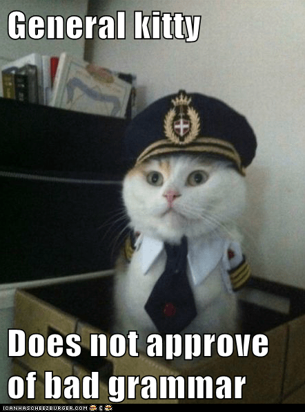 General kitty Does not approve of bad grammar - Cheezburger ...