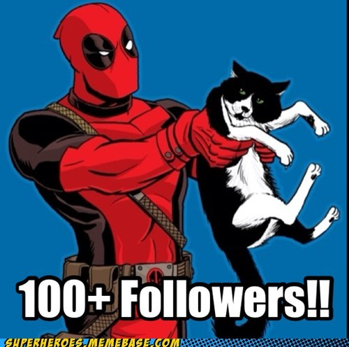 Cats,deadpool,followers,internet