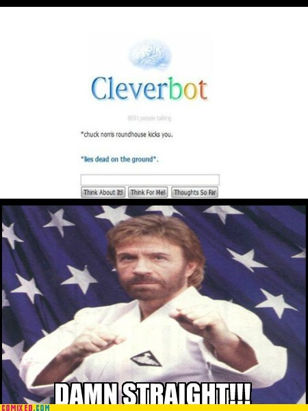 chuck norris joke,Cleverbot,roundhouse kick