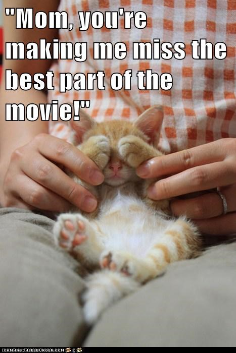 captions,Cats,cover your eyes,eyes,hands,lolcats,mom,Movie,movies,naughty