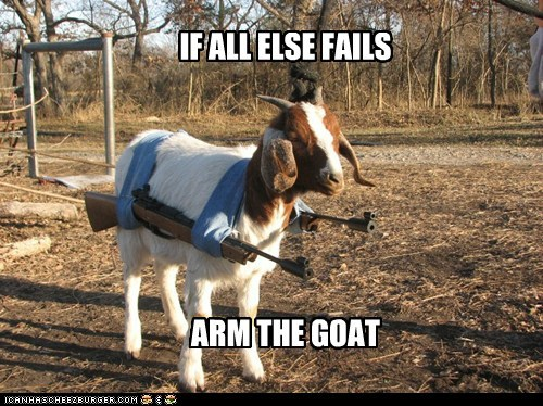 IF ALL ELSE FAILS ARM THE GOAT