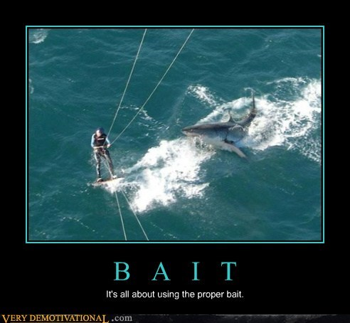 B A I T It's all about using the proper bait.