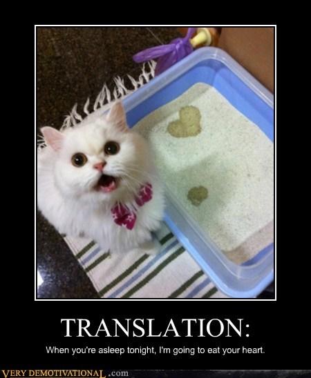 cat evil heart litter box - 6575732480