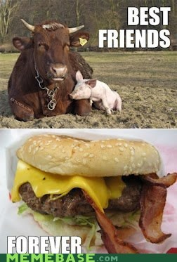 bacon,Beef,bff,cow,eggs,food,fox and hound,friends,pig
