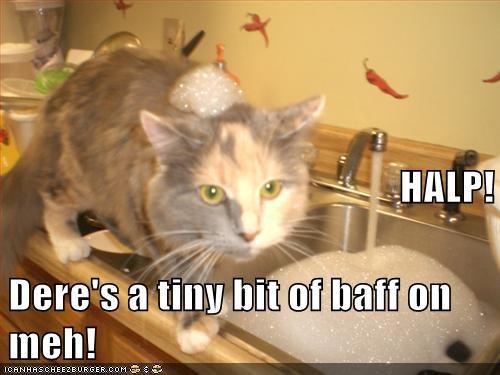 bath captions Cats foam halp help sink - 6575973888