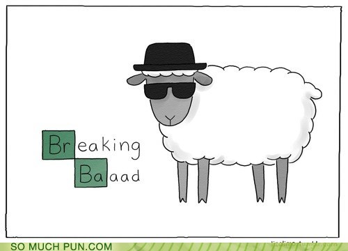 baaaaah,breaking bad,elongation,homophone,juxtaposition,lamb,onomatopoeia,replacement,sheep,show,similar sounding,sound,television